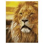 Broderie Diamant kit Squares intermédiaire Roi lion